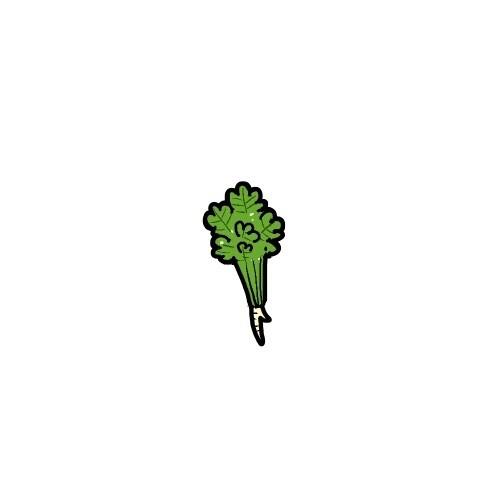 蔬菜卡通小头像